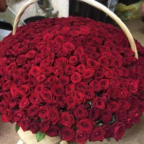 Купить на заказ 1001 роза с доставкой в Жетысае