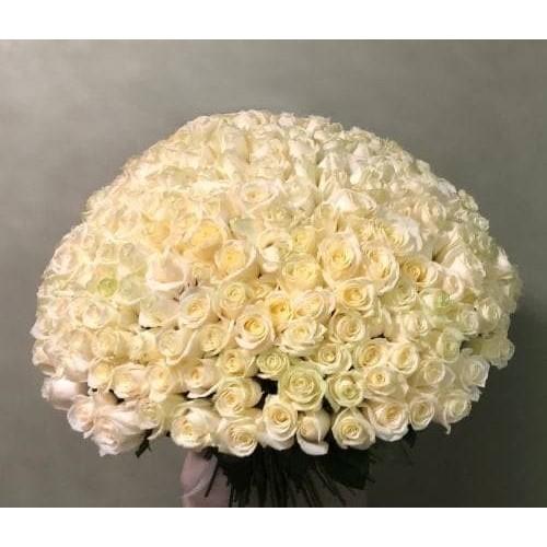 Купить на заказ 201 роза с доставкой в Жетысае