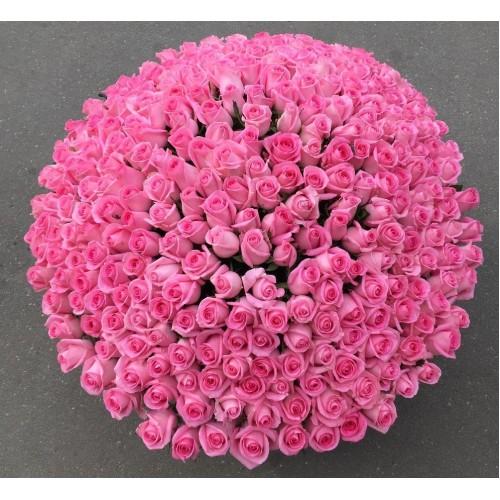 Купить на заказ 501  роза с доставкой в Жетысае