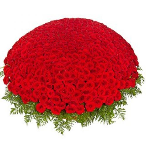 Купить на заказ 301  роза с доставкой в Жетысае